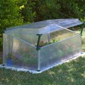 Coldframes & Cloches