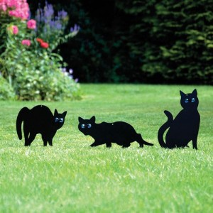 Set of 3 Cat Scarers