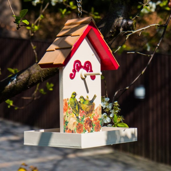Raspberry Red Printed Fruit Feeder