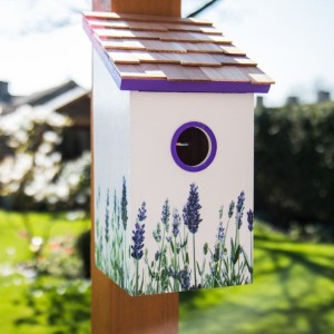 Lavender Saltbox Bird House