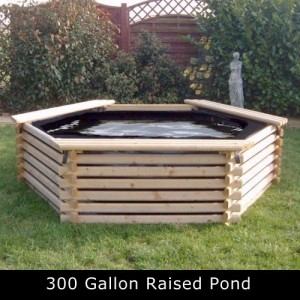 300 Gallon Raised Pond