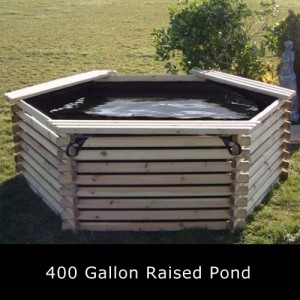 400 Gallon Raised Pond