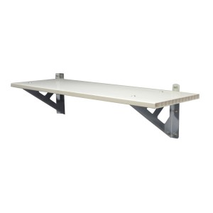 Palram Skylight Shed Shelf