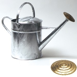 Brass Rose Watering Can