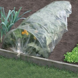 Poly Grow Tunnel