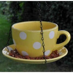 Teacup Feeder In Polkadot Yellow