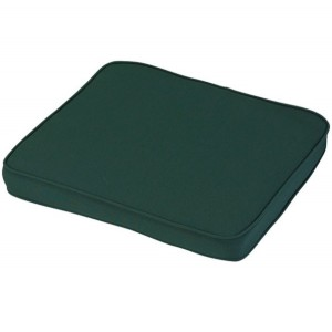 Standard Carver Cushion