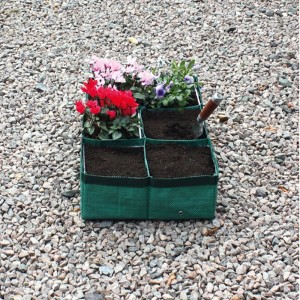 Rectangular Six Section Planter