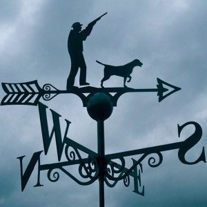 Shooting Weathervane