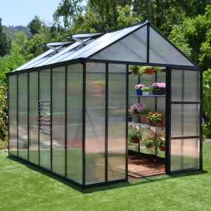 Palram 8 x 12 Anthracite Glory Greenhouse
