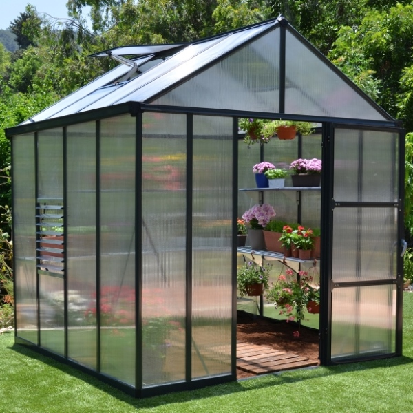 Palram 8 x 8 Anthracite Glory Greenhouse