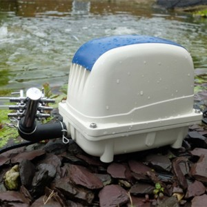 Electro Pond Air Pump