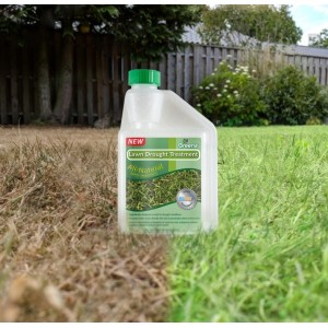 Lawn Drought Treatment