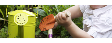 Keep The Kids Busy In The Garden This Summer
