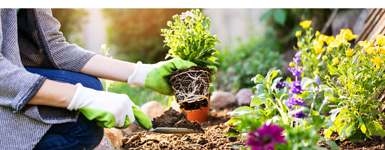 How To Be An Eco-Friendly Gardener